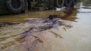 Кървава баня в мина на Нигерия