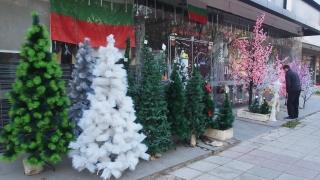 За над 25% от българите - Коледа невъзможна