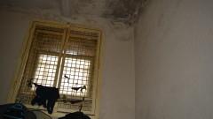 Екимджиев: С условията в арестите се изтръгват показания