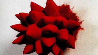 В Париж се откри изложба на червения цвят