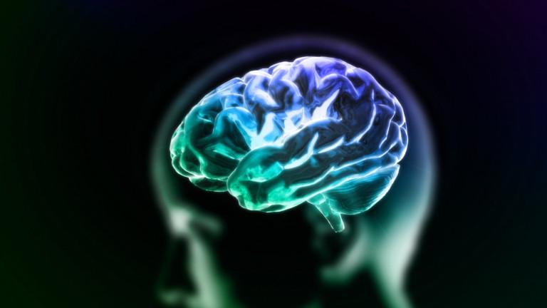 Какво се случва в мозъка, след като сърцето спре