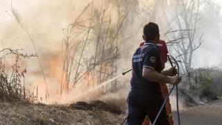 Жертви при огромни пожари в Италия