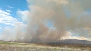 Голям пожар избухна край Мурсалево