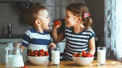МОН подписва стратегия за доставките на мляко и плод за училищата
