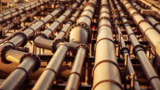 Природозащитници заклеймиха китайско-френски петролопровод в Африка