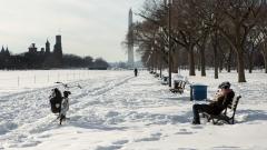 Невиждан арктически студ в САЩ