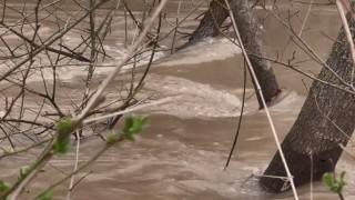 Проверяват сигнал за замърсяване на река Тунджа