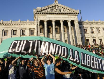 Уругвай първи в света узакониха отглеждането и продажба на трева