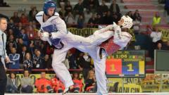 Седем златни медала за националите по таекуондо!