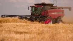 Изнесли сме над 1,1 млн. тона пшеница от юли насам
