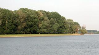Нефтените петна по Дунав са размити