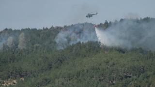 Пожарите в Кресненското дефиле продължават