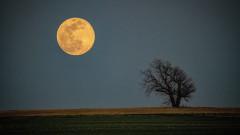 Някой възнамерява да остане задълго на Луната