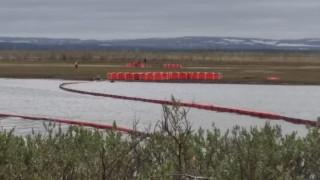 """""""Норникел"""" получи $2 млрд. глоба заради най-тежкия петролен разлив в историята на Русия"""