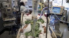 САЩ с близо 4 000 починали от COVID-19 за денонощие