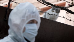 Вече 357 жертви на коронавируса в Румъния
