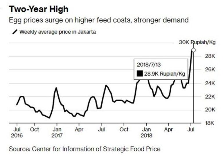 Цената на яйцата се повишава както заради търсенето, така и заради по-високите разходи за фуражи