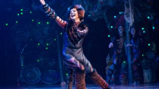 """Оригиналният мюзикъл """"Котките"""" от Бродуей за първи път у нас"""