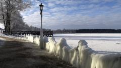 Студовете взеха още 10 жертви в Полша