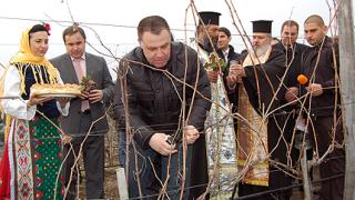 10-процентен ръст на износа на българско вино