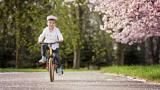 Фандъкова предлага маршрути за разходки на родители с деца в парковете