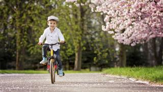 В София тече процедура за публична система за колело под наем, уверява зам.-кмет