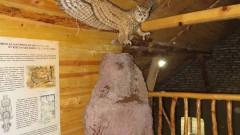Отварят музеите на Витоша