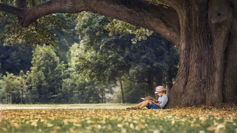 Циганско лято ни очаква в края на октомври и началото на ноември