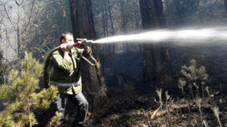 Огромен горски пожар край Банско