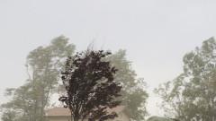 Силният вятър взе жертва в Божурище