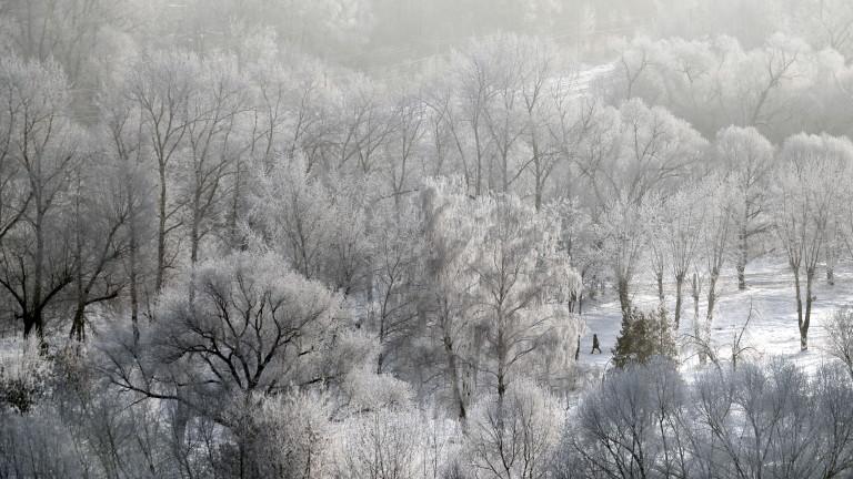 Мъж е починал от измръзване в Сърбия, след като студена