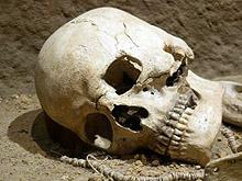 Ловци откриха човешки останки край Павликени