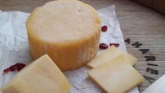 В търсене на перфектното българско сирене