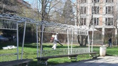 Пръскат срещу кърлежи и гризачи междублокови пространства в София