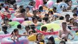 Жегата в Япония уби 60 души за 9 дни