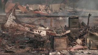 500 сгради изгоряха при пожара в Калифорния, 5 000 са застрашени
