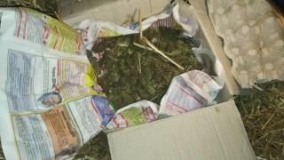 Наркотици, боеприпаси и нелегален алкохол иззе полицията във Велико Търново