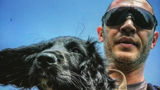 Том Харди и кучетата