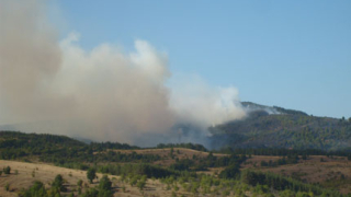 Арестуваха пастир за изгорелите 500 дка край Ивайловград