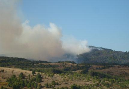 Три пожара горят в хасковско