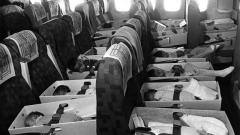 """Операция """"Babylift"""" или как бяха спасени над 3000 деца във Виетнам (СНИМКИ)"""
