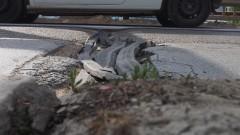 Започва ремонт на Кукленското шосе в Пловдив