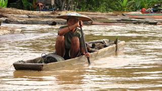 Борнео в забавен кадър