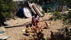 Азис след преврата в Турция: Добре съм, храня кокошчиците (СНИМКИ)