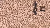 Тази карта показва кои страни ще оцелеят след климатичните промени