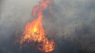 В Испания евакуираха над 1000 души заради горски пожари