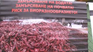 Протестиращи се обявиха срещу отглеждането на животни за кожа