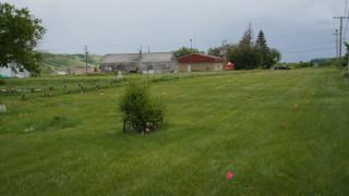В Канада откриха още 751 гроба в бивше училище за превъзпитаване на индианци