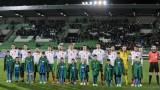 Георги Миланов: Можеше и да не загубим от Босна