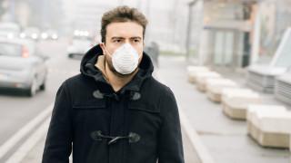 Оглупяваме ли от мръсния въздух